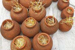 Chantier participatif de rangement d'automne 2020 Association Herbes vives