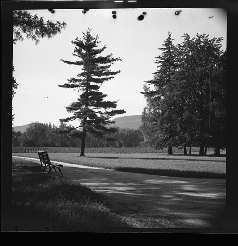 Parc Bertrand
